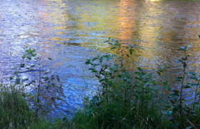 IMG_1275_2_Metolius_as_Monet.jpg